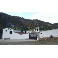 IDEAL FARMHOUSE FOR RURAL TOURISM WITH HALLS FOR HORSES IN ARCHIDONA